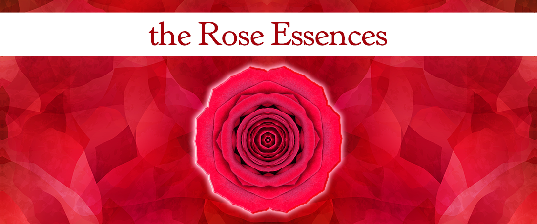 The Rose Essences